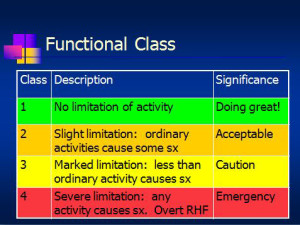Functional Classification of Pulmonary Hypertension